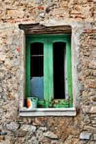Paint on Window